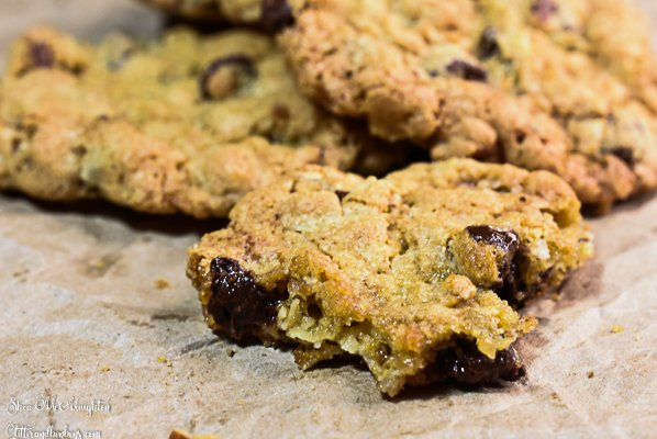 """Partially eaten chocolate chip oatmeal """"cowboy"""" cookie"""